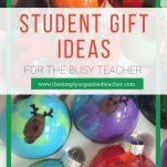 Give practical and fun student gifts with this list of student gift ideas.